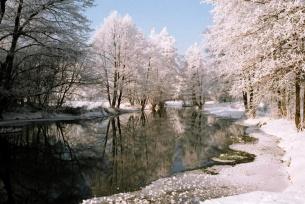 Rzeka Wierna - zima