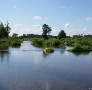Obszar Natura 2000: Dolina Nidy