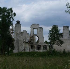 Ruiny zamku Kmitów w Mokrsku Górnym