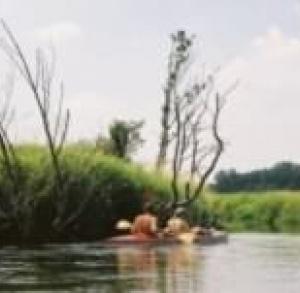 Szlak kajakowy na rzece Nidzie
